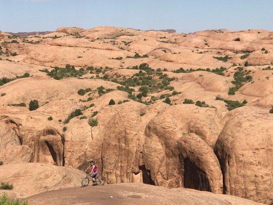 Slickrock Bike Trail: photo2.jpg