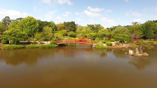 Toowoomba, أستراليا: The Japanese Gardens Toowoomba Famous Red Bridge
