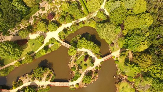 Toowoomba, أستراليا: An Aerial Shot Of The Parklands