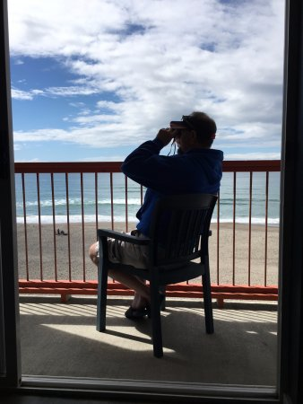 Surftides Lincoln City: Watching fishing/crabbing boats and even whales.
