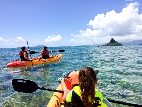 ‪Active Oahu Tours‬