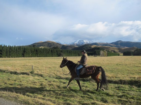 Springfield, New Zealand: Riding through the fields with a great view of the Alps.