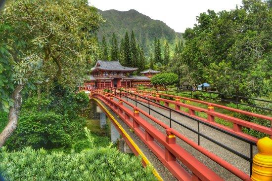 Oahu Photography Tours: photo7.jpg