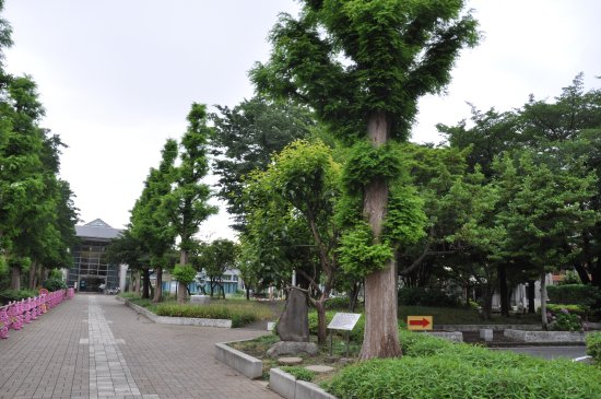 Mizonokuchi Ryokuchi