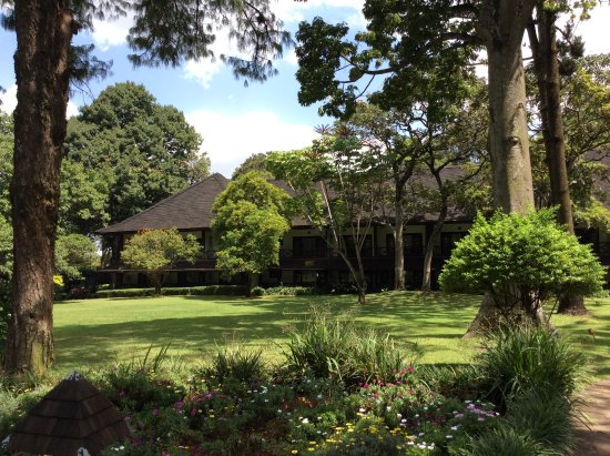 Safari Park Hotel: garden setting