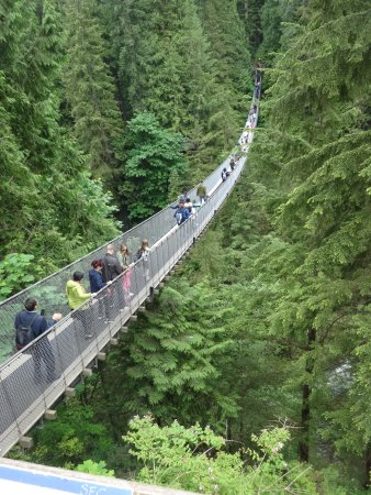 Vancouver Nord, Canada: The Bridge!
