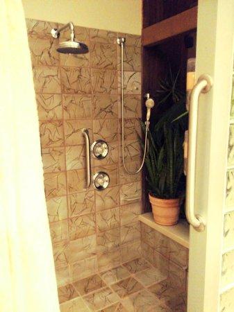 Media, PA: grand master suite - shower