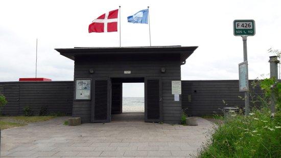 Risskov, Denmark: 20170607_104725_large.jpg