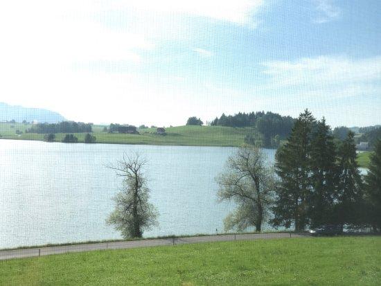 Ferienhof am See: photo0.jpg