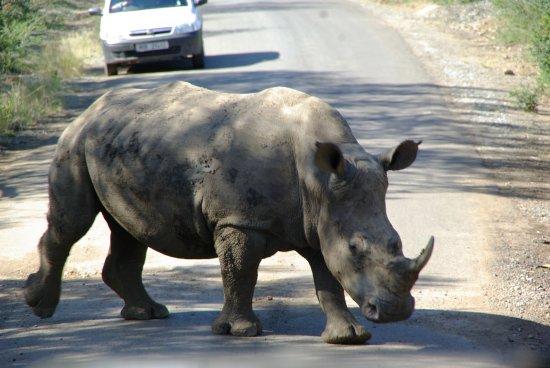 Zululand Foto