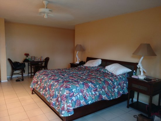 The Palms at Pelican Cove: Beachfront room