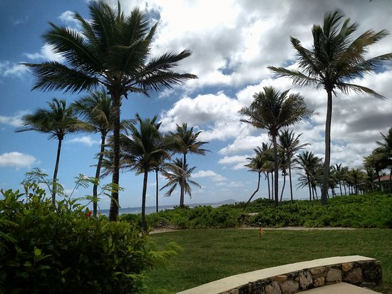 The Palms at Pelican Cove: View from beachfront room
