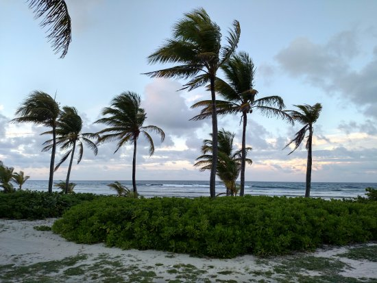 The Palms at Pelican Cove: Path to the beach from the beachfront rooms