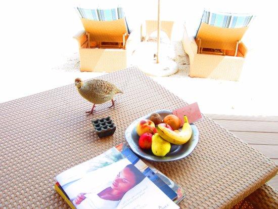 Sir Bani Yas Island, Emiratos Árabes Unidos: View from the Mangroove villa