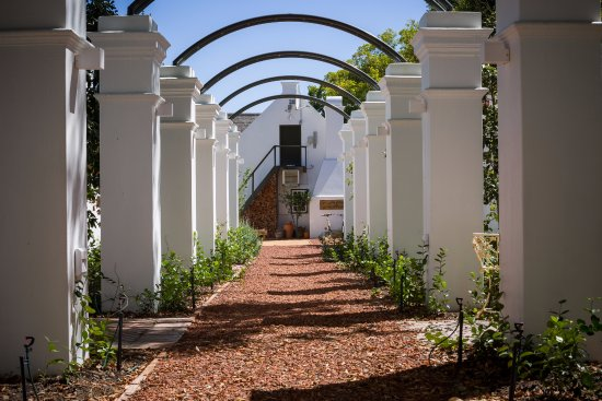 Akademie Street Boutique Hotel and Guest House : Lovely stroll down around the grounds