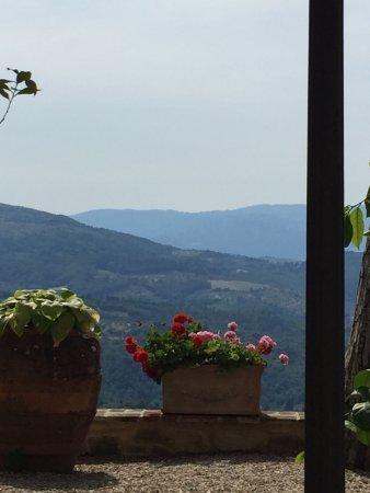 Molino del Piano, Italy: photo1.jpg