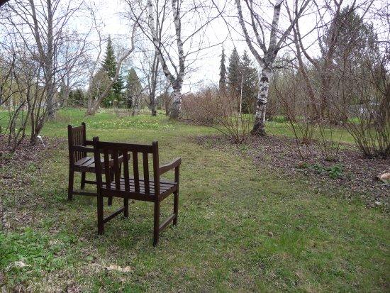 Joensuu, Finland: Места отдыха в открытой части.