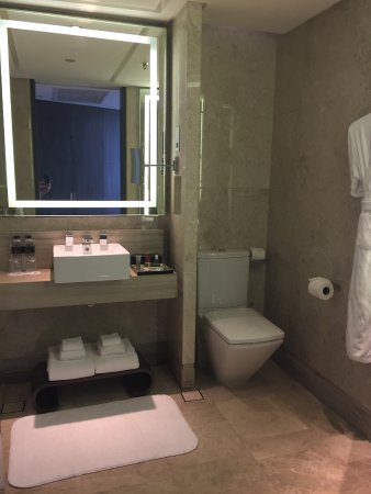 Premier Deluxe Room: Sink And Wc - Picture Of Singapore Marriott