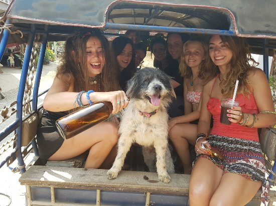 Easy Go Backpacker Hostel: Sometimes Dodo the dog comes tubing with us