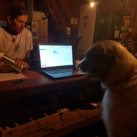 Easy Go Backpacker Hostel: Dog Dj