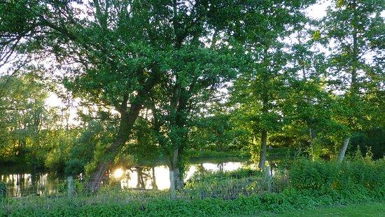 Hollingbourne Foto