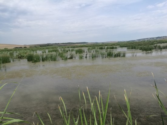 Kassandra, Greece: Sani wetlands