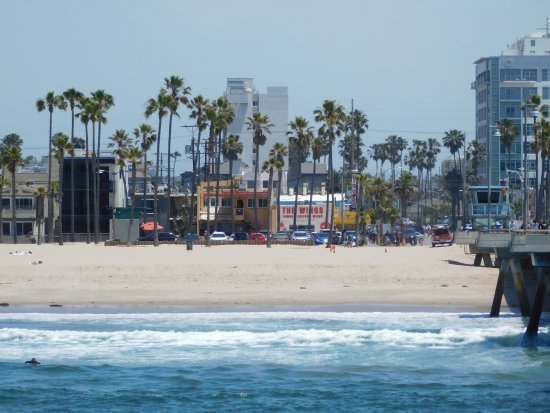 Inn At Venice Beach Updated 2018 Prices Hotel Reviews Los Angeles Ca Tripadvisor