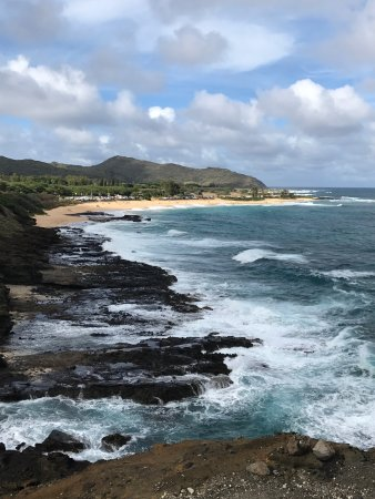 Discover Hawaii Tours: photo1.jpg