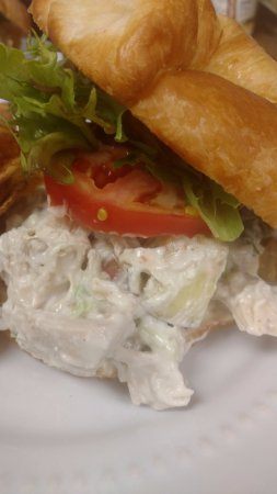 Hawkinsville, GA: Home made, even down to the mayo, Chicken Salad Sandwich