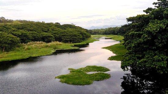 Chittur River, Palakkad, Kerala