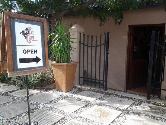 Piketberg, Güney Afrika: Fat Catz this way!