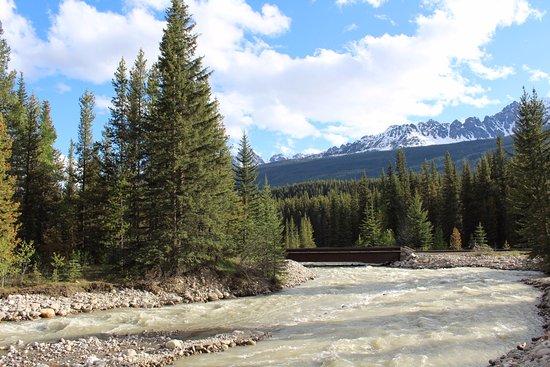 Baker Creek Mountain Resort: Creek and railroad view