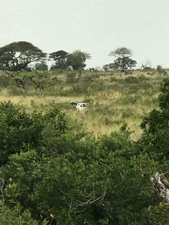 Hluhluwe Game Reserve, Νότια Αφρική: photo2.jpg