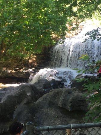 Bella Vista, AR: photo0.jpg