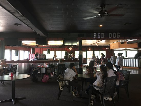 Stony Creek, NY: Red Dog Saloon during a kids field trip