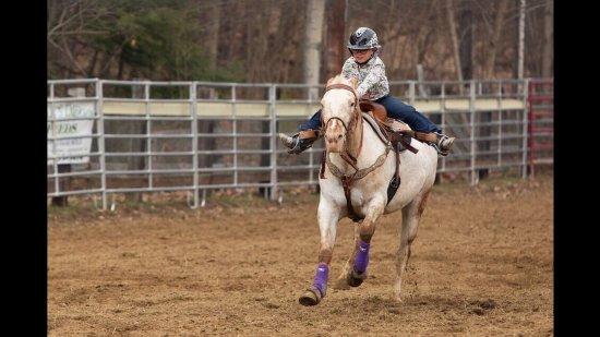 Stony Creek, NY: Rodeo