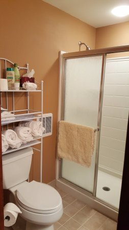 Dundee, Nova York: Robin's Nest Suite bath with double shower