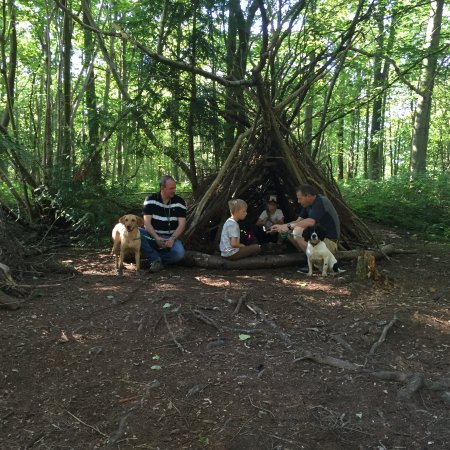 Osmotherley, UK: Group shelter building whilst staying at Cote Ghyll Mill