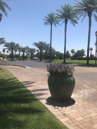 Litchfield Park, Arizona: photo1.jpg