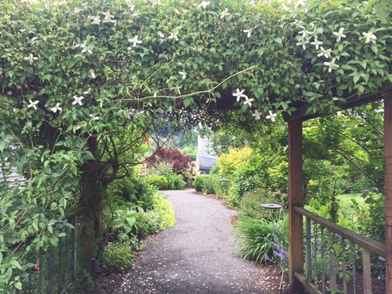 Rogerson Clematis Garden