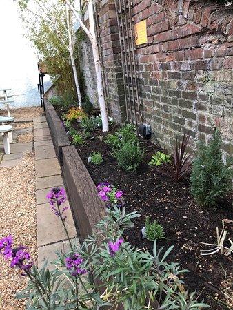 Ivinghoe, UK: garden
