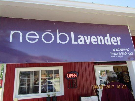 NEOB Lavender - Niagara Essential Oils & Blends : A stop on our tour