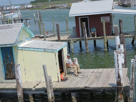 Reedville, VA: Soft shell crab shacks and workers on Tangier Island waters