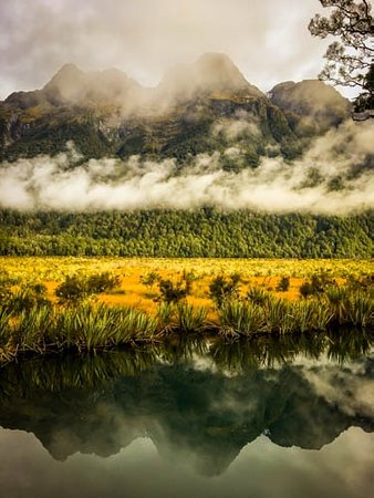 Fiordland National Park, Nuova Zelanda: fall color in the foreground
