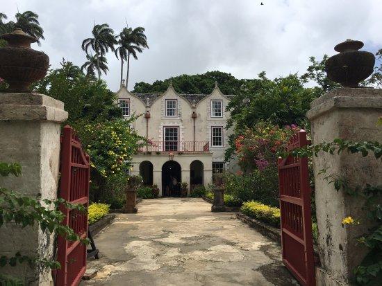 Saint Peter Parish, Barbados: photo0.jpg