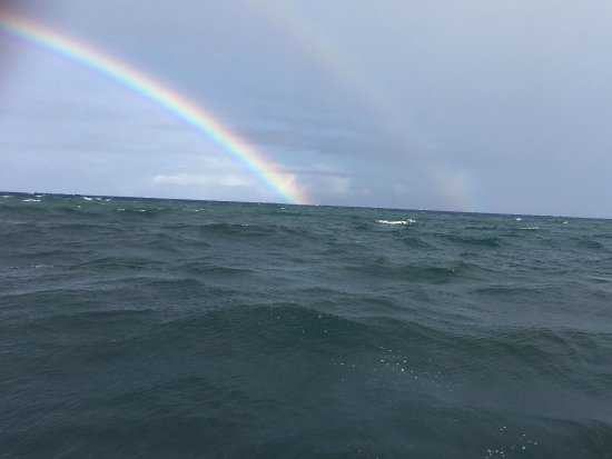 Pahoa, HI: This was a triple rainbow; but I could only capture the double :)