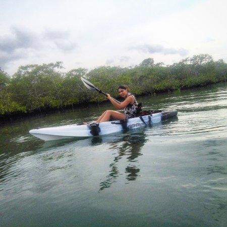 Puerto Jimenes, Costa Rica: Mangrove Tour