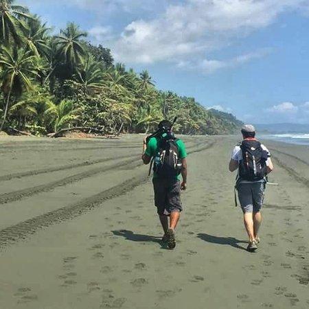 Puerto Jimenes, Costa Rica: Osa Birders Tours