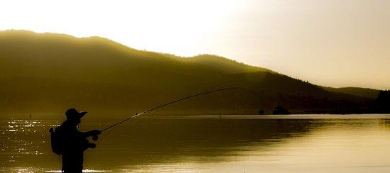 Big Bear Region, CA: Fish Big Bear Lake