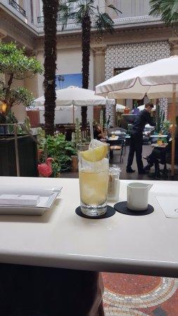 Prince de Galles, a Luxury Collection Hotel: Ice tea in the winter garden